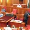 10 things the Senate did to Make Nigerians Proud in 2017 – Carl Ndukwe