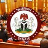 Will the Nigerian Senate get it right on Healthcare? – Carl Ndukwe